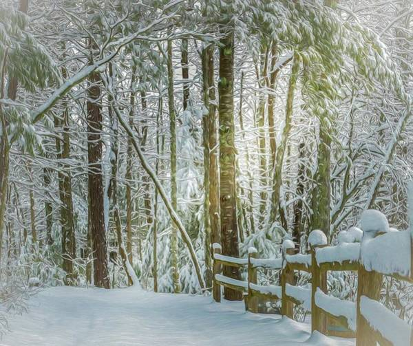 Snow Fence Digital Art - Beam On A Wonderland by Lisa Bell