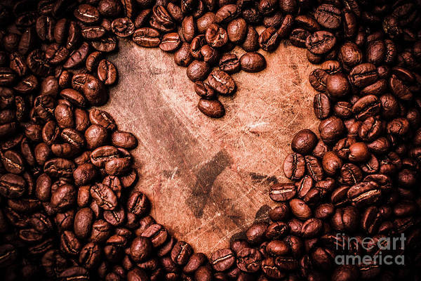 Photograph - Bean Loved by Jorgo Photography - Wall Art Gallery