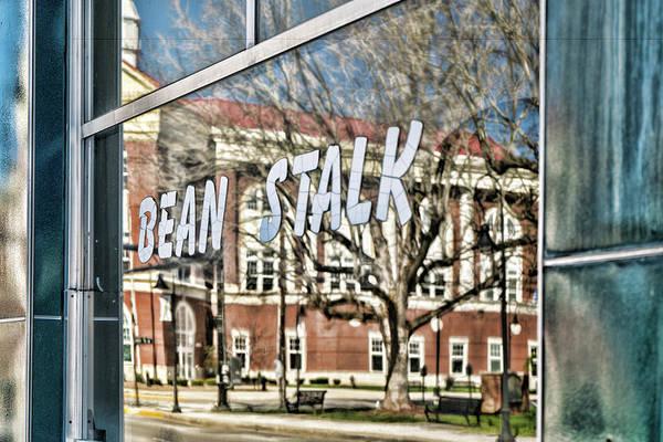 Photograph - Bean Stalk Reflection by Sharon Popek