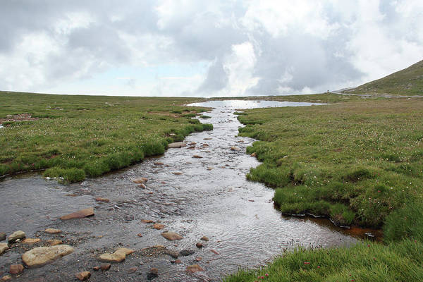 Photograph - Bear Creek On Mt. Evans by Marie Leslie