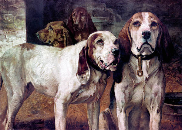 Upland Wall Art - Painting - Bear Dogs - No Border by H R Poore