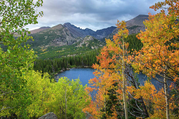 Photograph - Bear Lake Autumn Classic by Aaron Spong