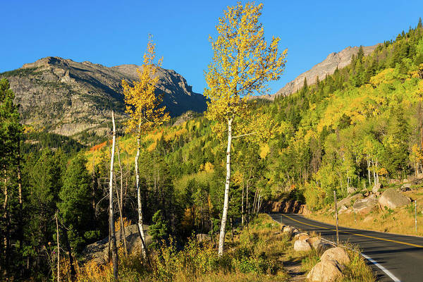 Photograph - Bear Lake Road In Fall by John De Bord