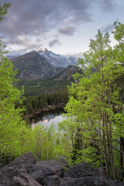 Wall Art - Photograph - Bear Lake Spring by Aaron Spong