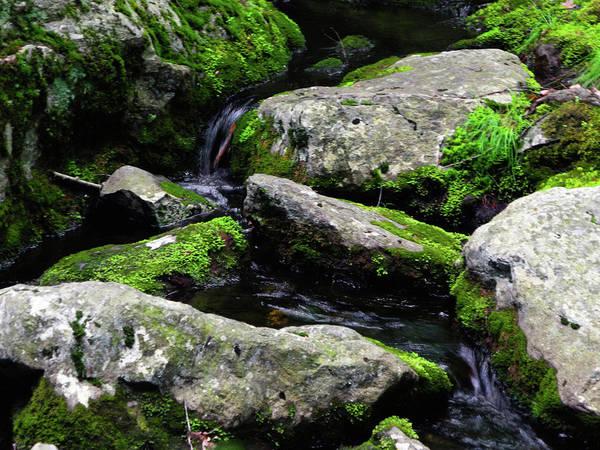 Photograph - Bear Mountain Stream by Raymond Salani III
