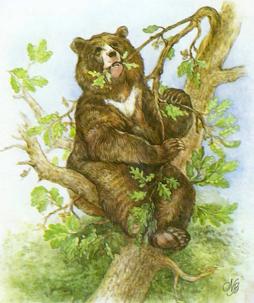 Guache Painting - Bear by Natalie Berman