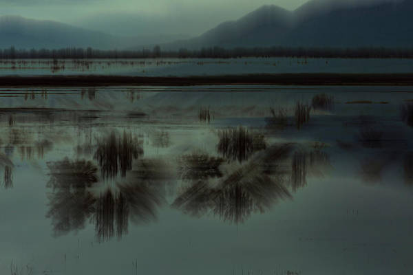 Photograph - Bear River Bird Refuge by Deborah Hughes