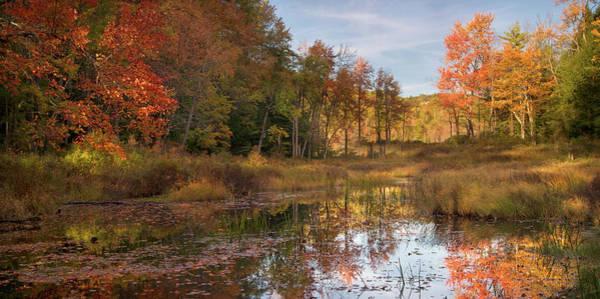 Photograph - Bear River Fall by Darylann Leonard Photography
