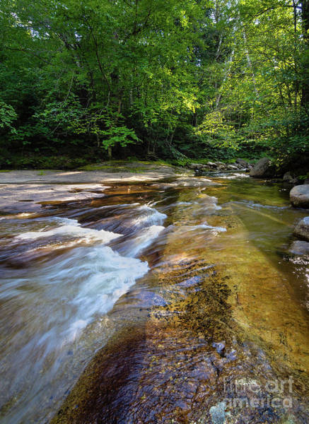 Photograph - Bear River, Grafton Notch State Park, Newry, Maine #10043 by John Bald