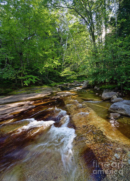 Photograph - Bear River, Newry, Maine #10045 by John Bald
