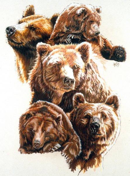 Pastel - Bear With Me by Barbara Keith
