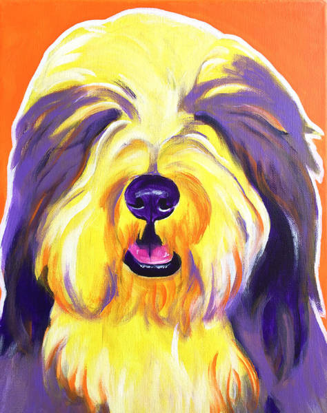 Wall Art - Painting - Bearded Collie - Banana by Alicia VanNoy Call