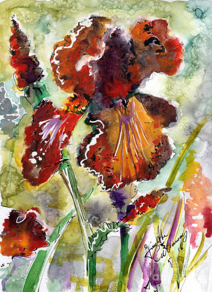 Painting - Bearded Iris Brown Sally Watercolor by Ginette Callaway
