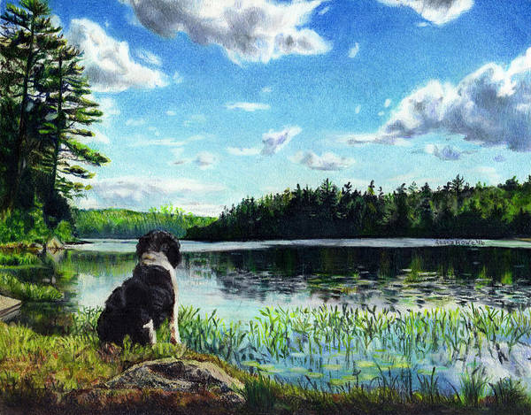 Weeds Drawing - Beasley On Black Pond by Shana Rowe Jackson