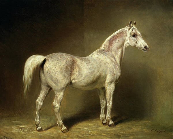 Herd Of Horses Wall Art - Painting - Beatrice by Carl Constantin Heinrich Steffeck