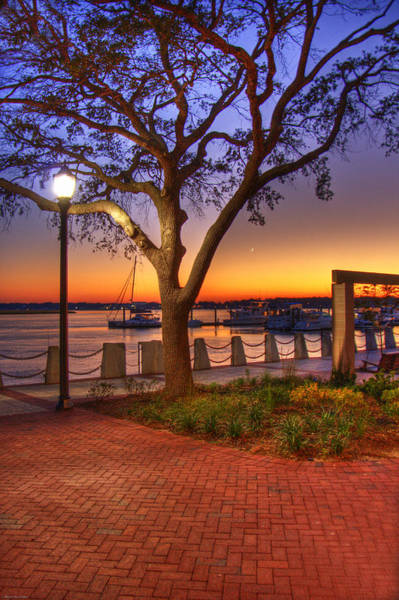 Wall Art - Photograph - Beaufort Waterfront by Ches Black