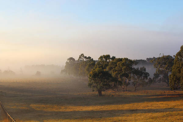 Photograph - Beautiful Autumn Morning Yarra Glen 29-03-2015 by Bert Ernie
