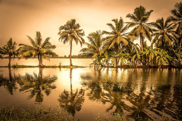 Kerala Photograph - Beautiful Backwater View Of Kerala, India. by Art Spectrum