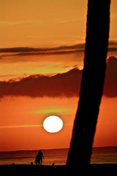 Photograph - Beautiful Baja by Diana Hatcher