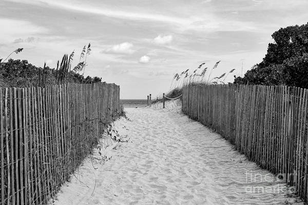 Photograph - Beautiful Beach Day - Black And White by Carol Groenen