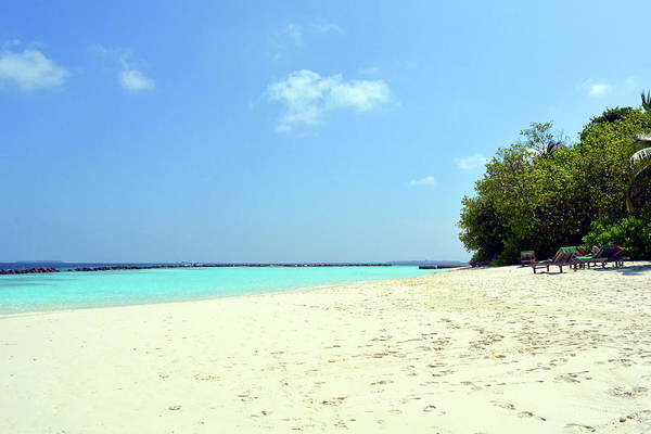 Photograph - Beautiful Beach In The Maldives With Clear Blue Water by Oana Unciuleanu