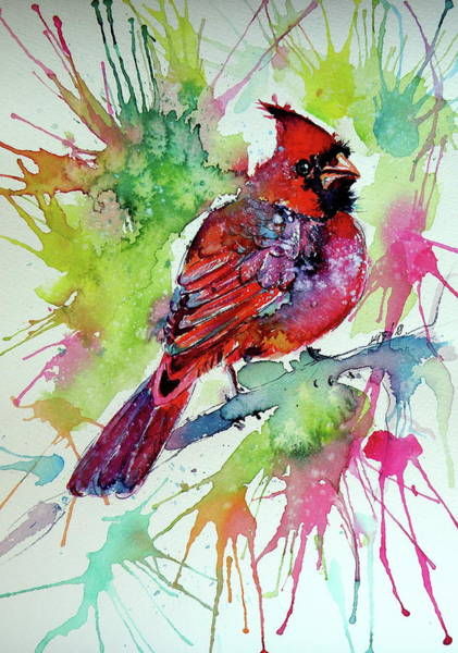 Wall Art - Painting - Beautiful Cardinal Bird by Kovacs Anna Brigitta