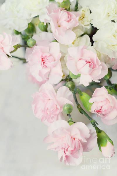 Wedding Bouquet Photograph - Beautiful Carnations by Stephanie Frey