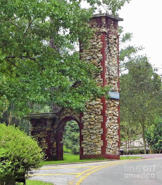 Photograph - Beautiful Chert Column by D Hackett