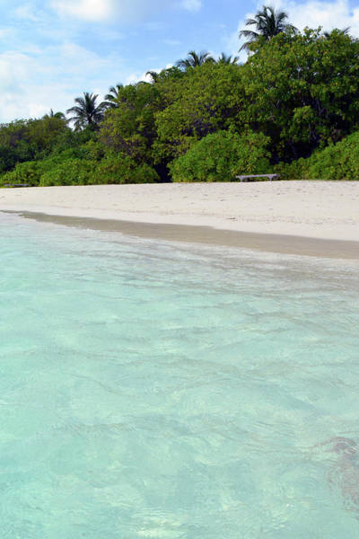 Photograph - Beautiful Clear Turquoise Water On An Island In The Maldives by Oana Unciuleanu