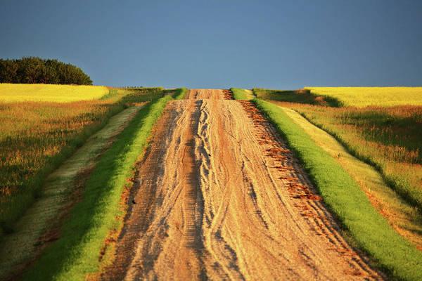 Prairie View Digital Art - Beautiful Colors Along A Saskatchewan Country Road by Mark Duffy