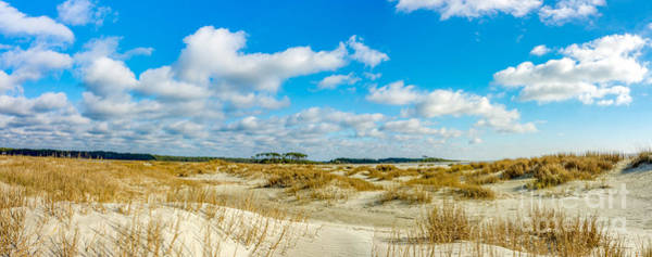 Photograph - Beautiful Day by David Smith
