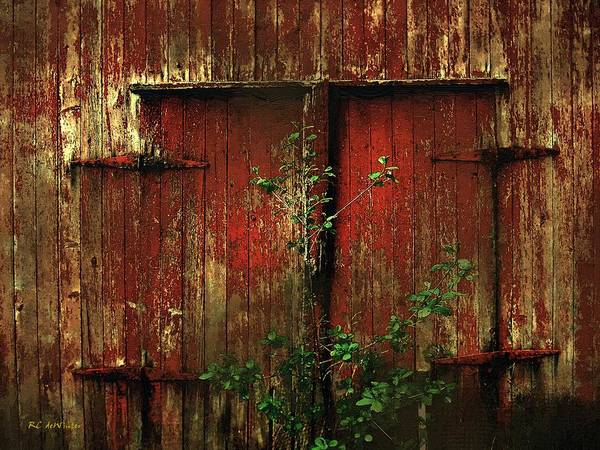 Painting - Beautiful Decay by RC DeWinter