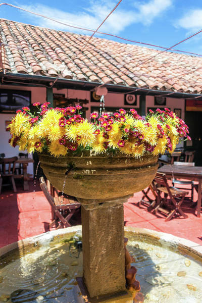 Boyaca Photograph - Beautiful Fountain And Flowers by Jess Kraft