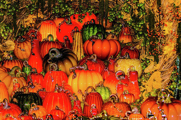 Photograph - Beautiful Glass Pumpkins by Louis Dallara