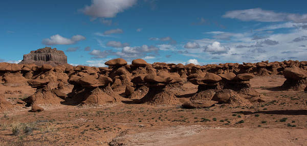 Photograph - Beautiful Goblin Valley by Jennifer Ancker