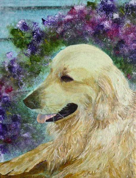 Painting - Beautiful Golden by Claire Bull