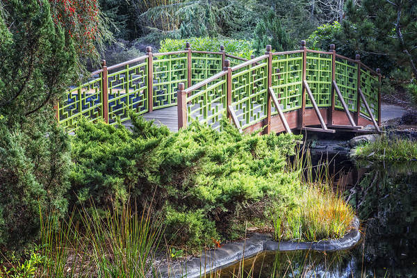 Photograph - Beautiful Green by Debra and Dave Vanderlaan
