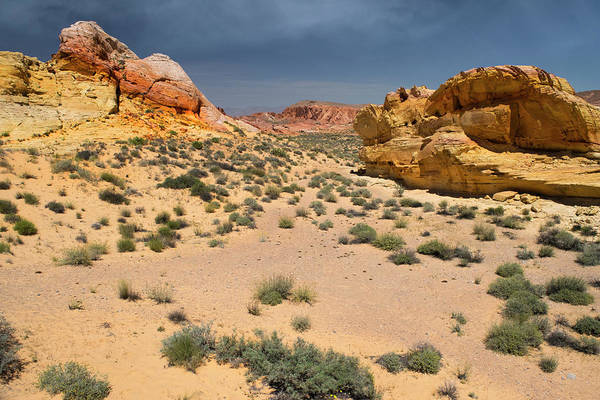 Wall Art - Photograph - Beautiful Hiking In The Valley Of Fire by Frank Wilson