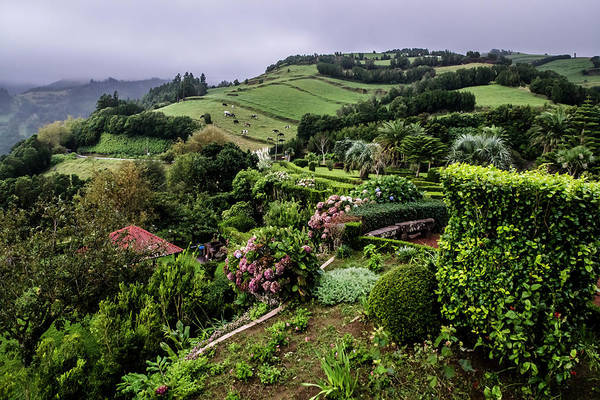 Photograph - Beautiful Hills In The Azores by Sven Brogren