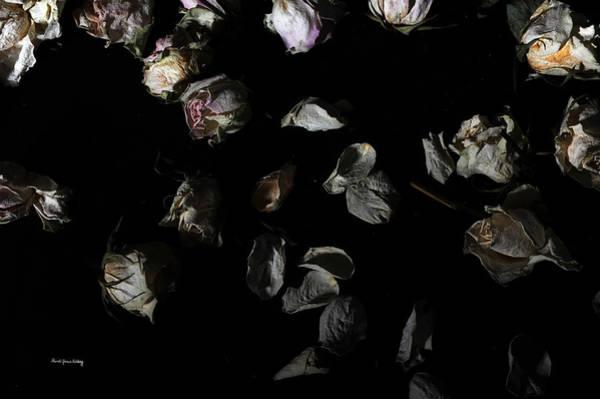Photograph - Beautiful Mess by Randi Grace Nilsberg
