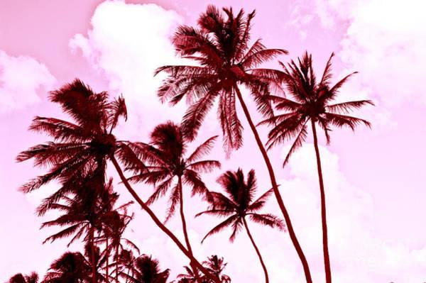 Wall Art - Photograph - Beautiful Palms Of Maui 13 by Micah May