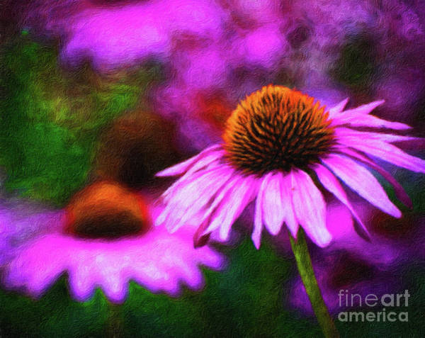 Wall Art - Digital Art - Beautiful Pink Daisies Cornflowers Painting by Amy Cicconi