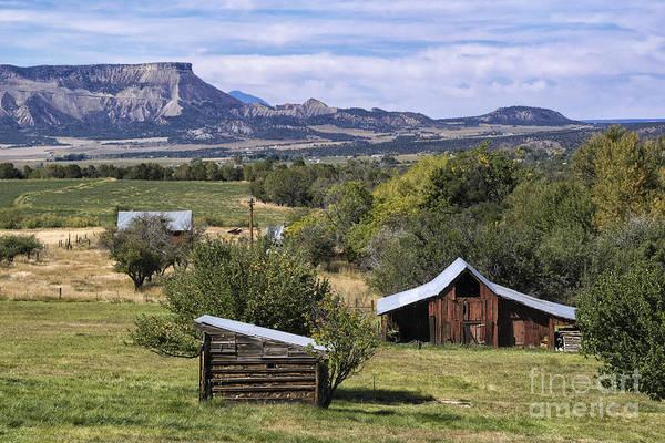 Wall Art - Photograph - Beautiful Rural Mancos Colorado by Priscilla Burgers