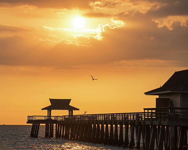 Photograph - Beautiful Sunset Over The Naples Pier Naples Florida by Toby McGuire