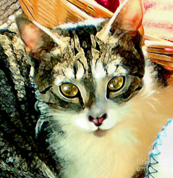 Painting - Beautiful Tabby by Elinor Mavor