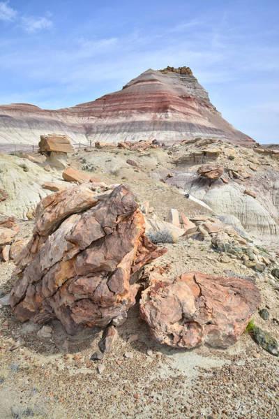 Photograph - Beautiful Utah Dunes by Ray Mathis