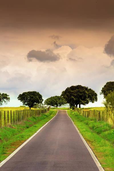 Photograph - Beautiful Way by Edgar Laureano