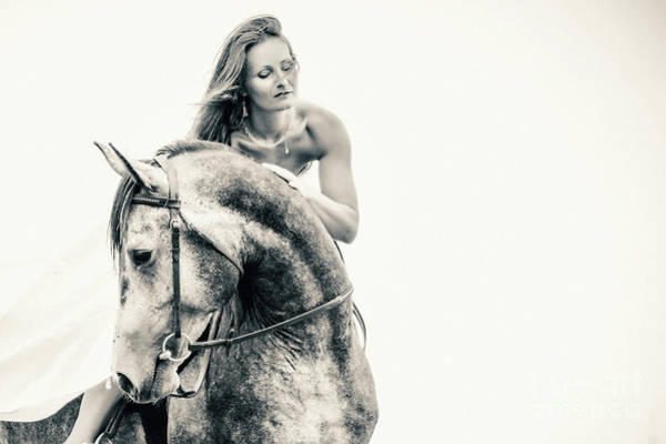 Photograph - Beautiful Woman In White Dress And Black Horse Portrait by Dimitar Hristov