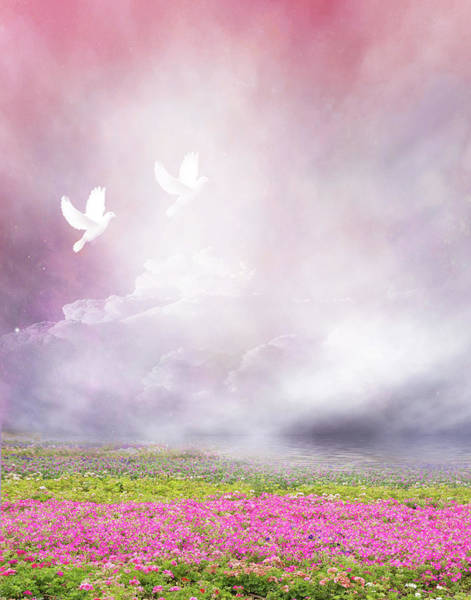 Wall Art - Photograph - Beautiful World by Art Spectrum