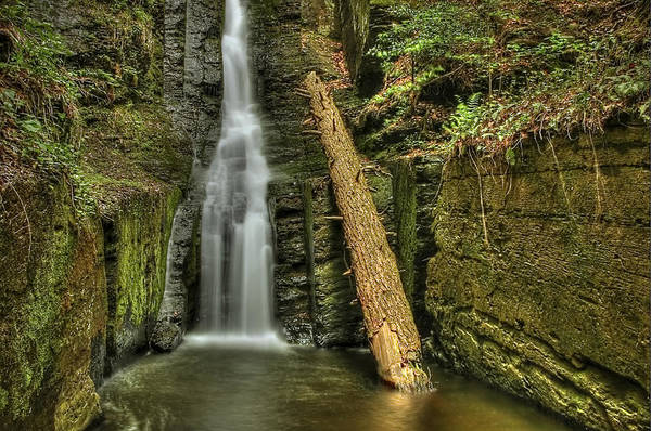 Poconos Wall Art - Photograph - Beautifully Confined by Evelina Kremsdorf